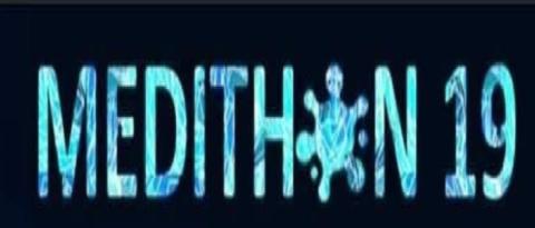 MEDITHON 19